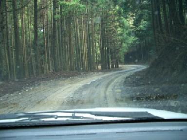 20040326-2.jpg